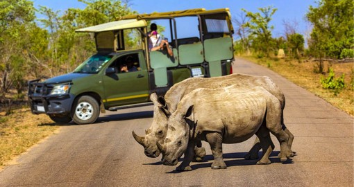 Kruger National Park is one of Africa's largest and has a high density f wildlife