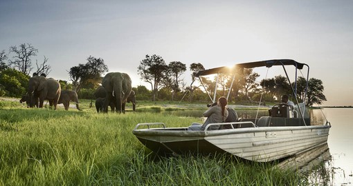 Chobe is home to the world's largest population of Elephants