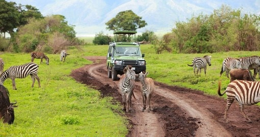 Tanzania's Ngorongoro Crater will be a highlight of your African safari.