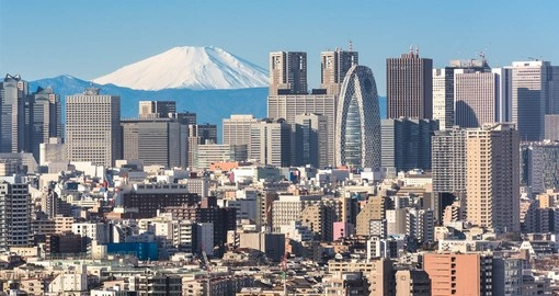 Experience what the Tokyo city lifestyle has to offer on your Japanese Vacation