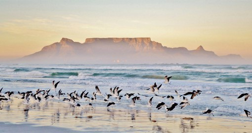 Table Mountain has long been a welcoming icon to travellers