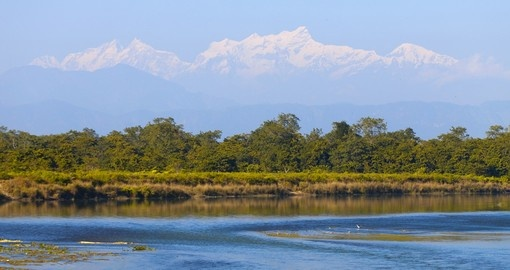 Visit the UNESCO World Heritage site known as Chitwan National Park on one of your Nepal Tours