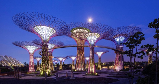 Explore the wonderfully built Singapore Gardens on your Trips to Singapore