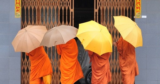 Monks on their daily walks in Phnom Penh