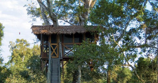 Inkaterra Canopy Walkway & Tree House are the perfect lookout for toucans, woodpeckers and trogons