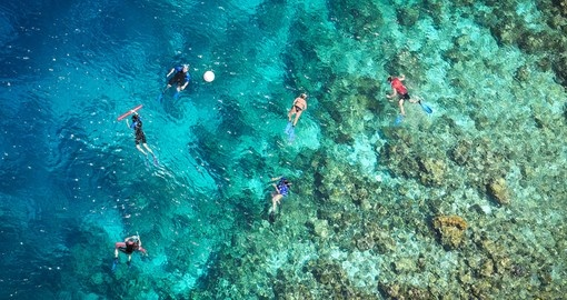 Go on a snorkeling adventure in the reefs that surround the island of Bandos on your Maldives Vacation