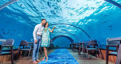 Dine at the world's largest undersea restaurant
