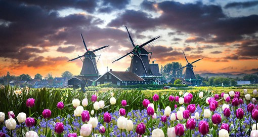 When it comes to beauty, the 19 polder draining windmills of the Kinderdijk win first prize