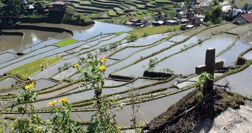 Cross water and rice terraces in Batad near Banaue