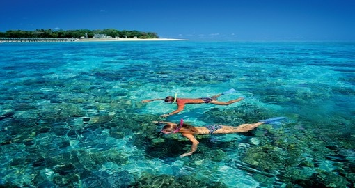 Experience snorkeling at Green Island during your next Australia tours.