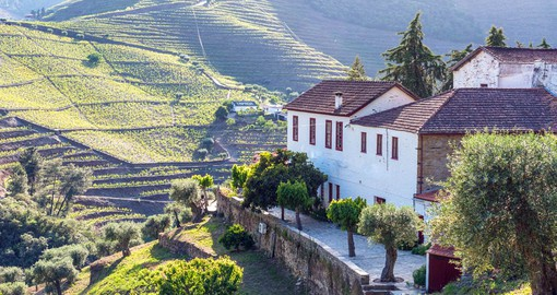 Visit one of the Port Houses in the Douro Valley to sample the regions most famous product