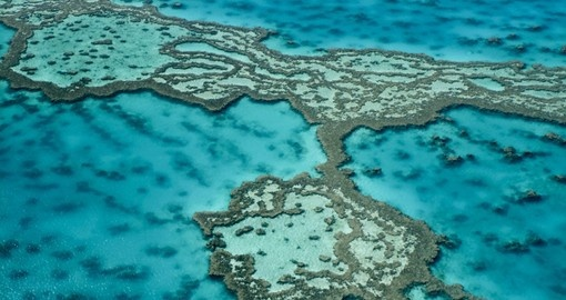 Explore the wonders of the Great Barrier Reef during your next Trip to Australia.
